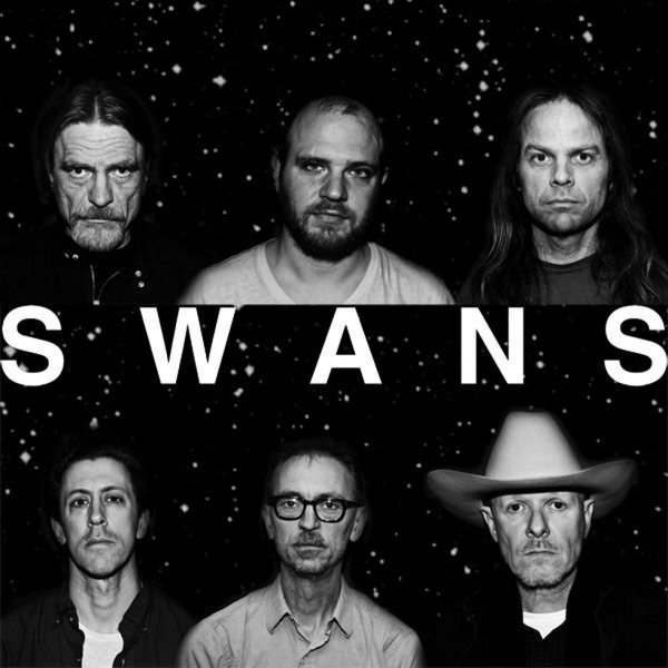 Display_swansband2